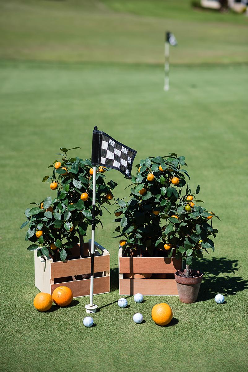 Sebring Golf Courses