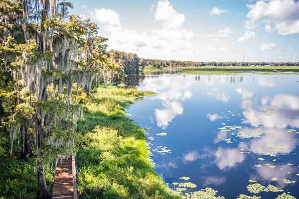 Things To Do In Sebring Fl >> The Top 10 Free Things To Do Here In Sebring Florida