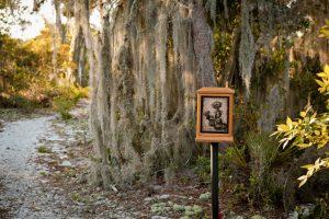 Dog friendly wildflower wayside shrine trail